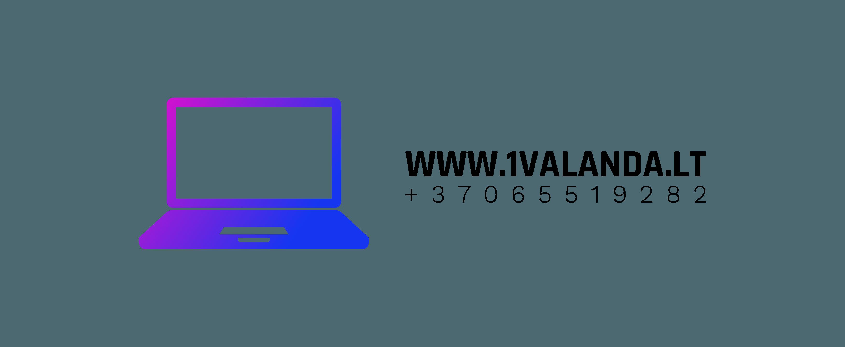 Macbook pakrovėjai, baterijos, AirPods ausines